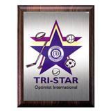 1812P - Tri-Star Sports Plaque - thumbnail